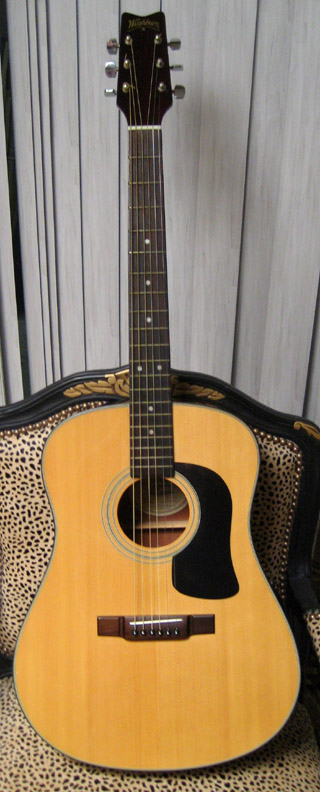 1991 Washburn D-10n  better than new!....$229